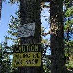 Option to hike back down