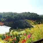 Foto van ZEN Valley Dalat