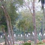 Photo of Mida Resort Kanchanaburi