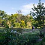 Photo of Brisbane Botanic Gardens Mt. Coot-tha