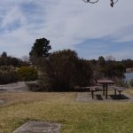Stanthorpe Tours - Local town park, relaxation heaven