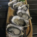 oysters at Bill's-delicious