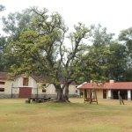 Photo of La Estiria