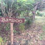 Totoco Eco-Lodge