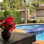 Foto de Dolphin Bay Resort