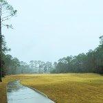 teeing off in the rain