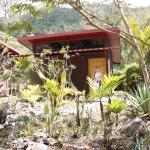 Talamanca Reserve Photo