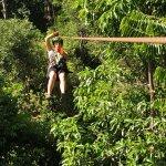 Foto de Chiclets Tree Zipline