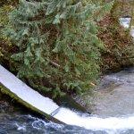 Overflow chute