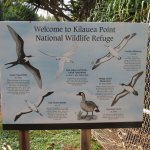 Kilauea Point National Wildlife Refuge Foto