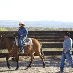 Learn how to be a better rider from our professional instructors.