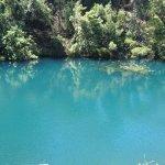 青く濁った池の水