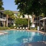 Photo of Sheraton Vistana Resort Villas- Lake Buena Vista