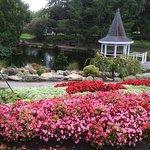 Foto Taman Pollard