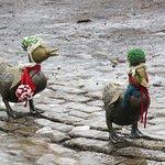 Bundled up ducklings