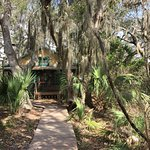 Foto de The Lodge on Little St. Simons Island