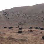 Foto di Desert Retreat Camp