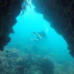 Foto di Rainbow Divers-Phu Quoc