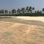 Photo of Benaulim Beach