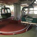 Foto di Skyrail Rainforest Cableway