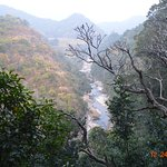 Picture of the perrineal river in the canyon as seen from the top near the entrance to the Caves