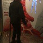 Photo of CORPUS 'journey through the human body'