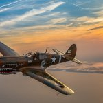 "The P-40 Warhawk ""Jacky C"" in its element over the beaches of Long Island. Photo by: M.Killian©"