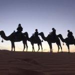 Photo of Desert Dream