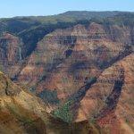 "on the rim of the ""grand canyon"" of Kauai"