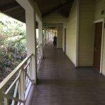 Foto de Gamboa Rainforest Resort