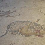 Photo of Mosaic Museum