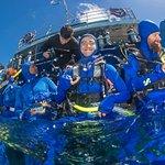 Foto de Reef Experience