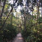 Foto de Santuário Falls