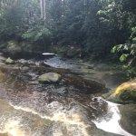 Santuário Falls Foto
