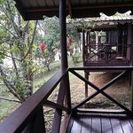 Foto de Proboscis Lodge Bukit Melapi