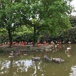 Photo of Shanghai Wild Animal Park