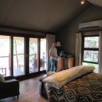 Our room - leopard