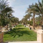 Photo of Al Ain Zoo