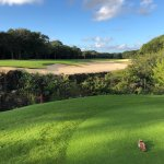 a lagoon directly in front of the tee box, and a elongated fairway bunker you must clear