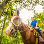 Trail rides available at our stables