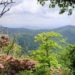 Wonderful views of the Blue Ridge Mountains reward visitors who climb to the top of Mount Pisgah