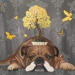 """Bonsai Bullie"" by Heather Gauthier"