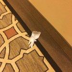 Foto van Hollywood Casino St. Louis Hotel