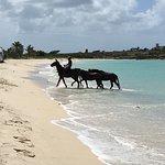 Photo de Buccaneer Beach Club
