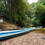 Photo of Borneo Adventure -  Day Tour