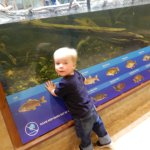 Virginia Aquarium & Marine Science Centerの写真