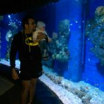 Foto de Hurghada Grand Aquarium
