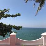 Photo de Palm Tree Heritage