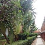 Patong Resort Foto