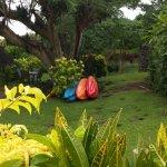 Foto de Coconut Grove Beachfront Cottages